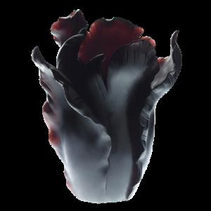Daum appaloosa tulip vase