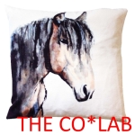 The Co*Lab